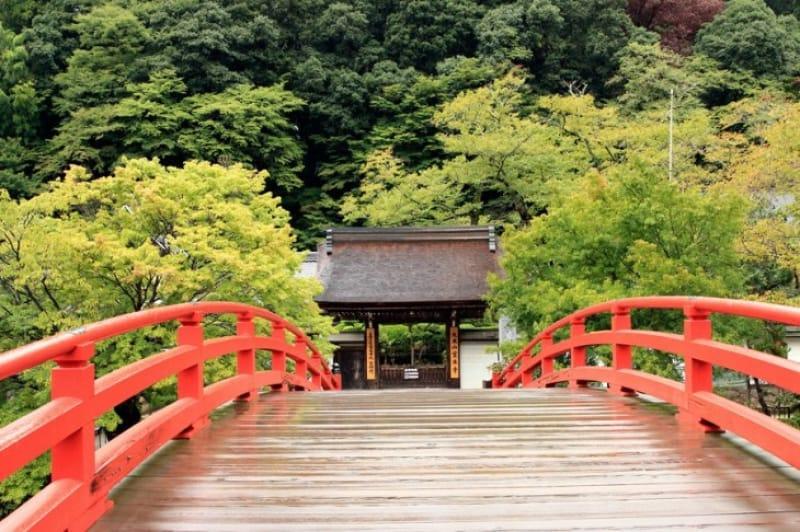 五重塔と紅葉の競演・室生寺