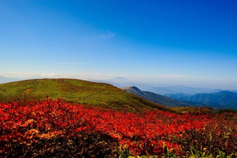 紅葉の見ごろは9月下旬から