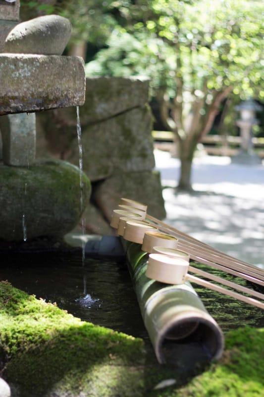 奈良に春の訪れを告げる・氷室神社