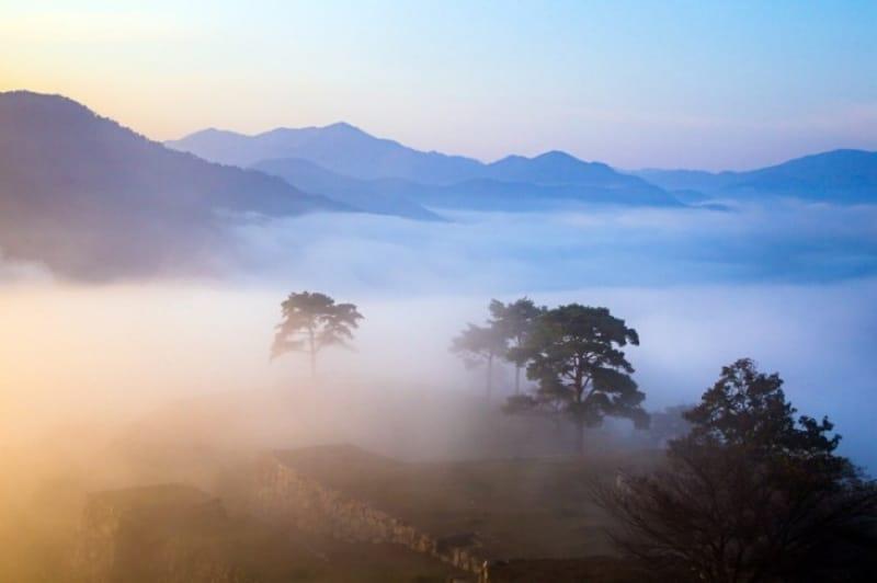 石垣と自然が織りなす神秘の景色、一度は行ってみたい竹田城!