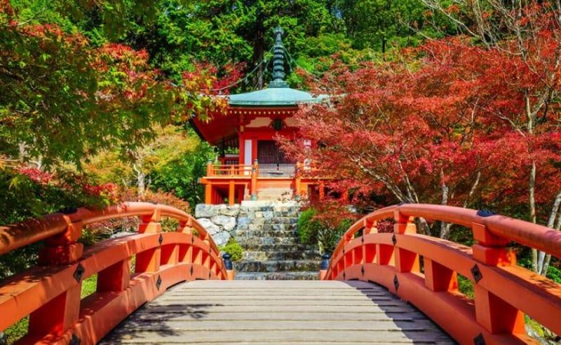 醍醐寺はココ