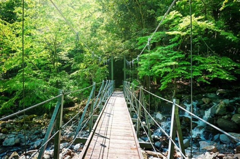吊り橋と滝をめぐるハイキング