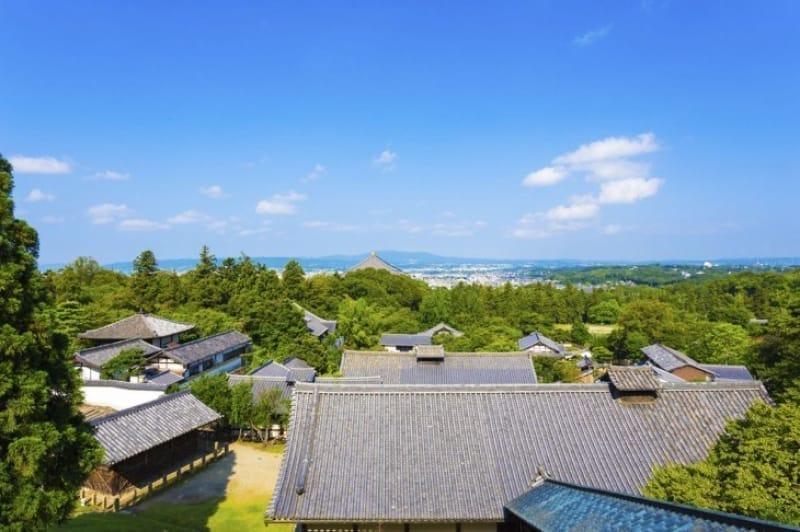 52762:平城京遷都1300年のいにしえの古都、奈良