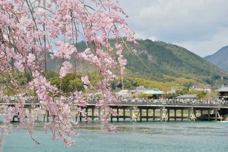 春は桜、秋は紅葉、そして冬は雪化粧