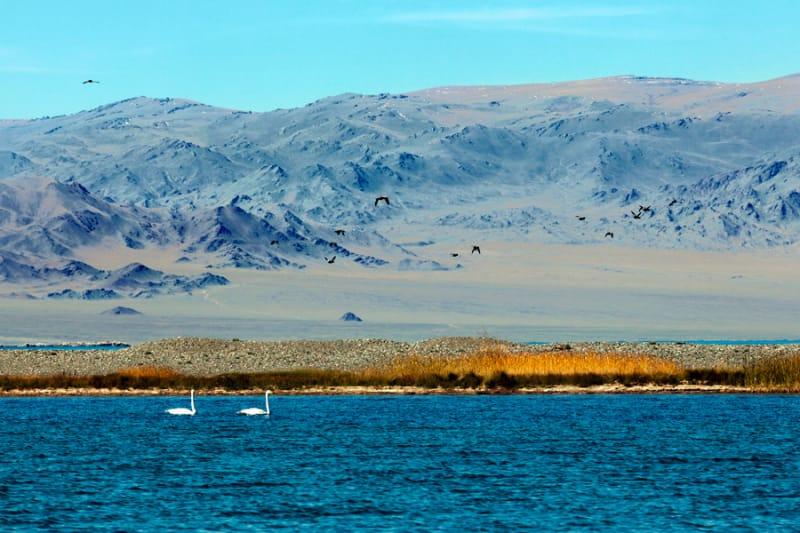 ウヴス・ヌール盆地 2003年 世界自然遺産登録