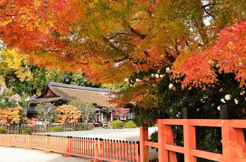紅葉の季節も美しい!