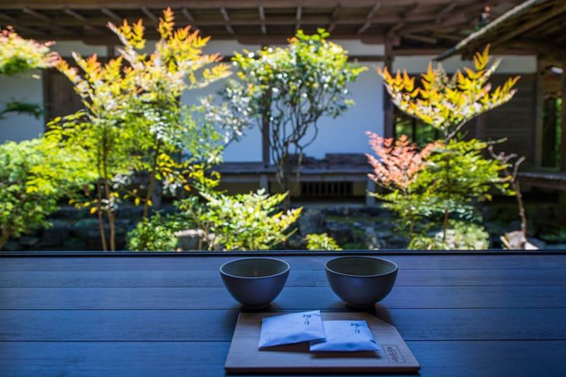 日本最古の茶園を持つ