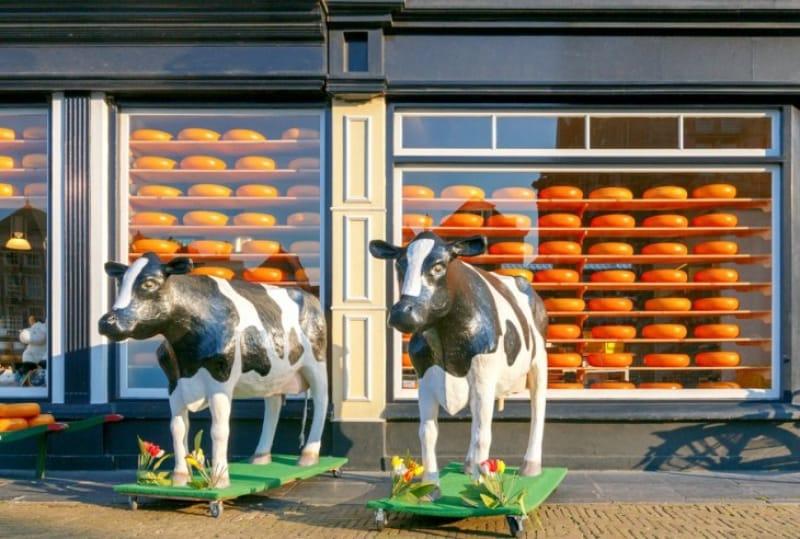 オランダのチーズを堪能したい!