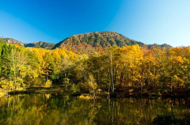 秋は紅葉、冬はウインタースポーツ・苗場山