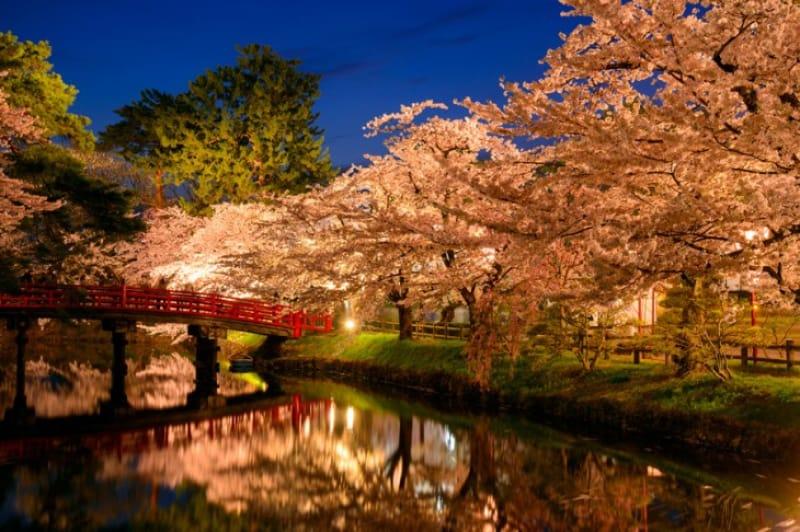 「春」に桜の見どころといえば、弘前城