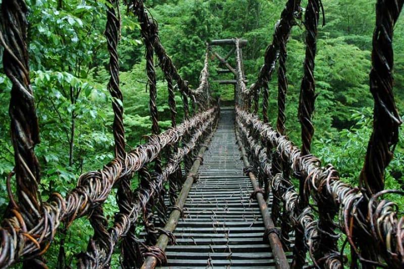 第5位 祖谷のかずら橋/徳島県