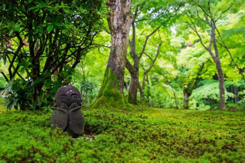 美しい庭園が評判の寺院