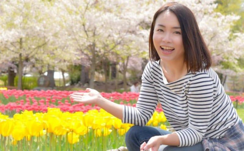 96929:春満開の国営アルプスあずみの公園ではチューリップが満開!