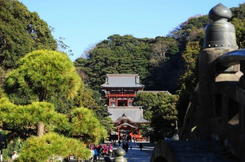 初詣は大切な人と訪れたい「鶴岡八幡宮」