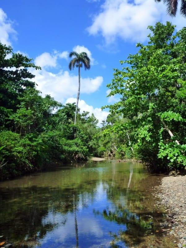 広大な面積を擁する アレハンドロ・デ・フンボルト国立公園