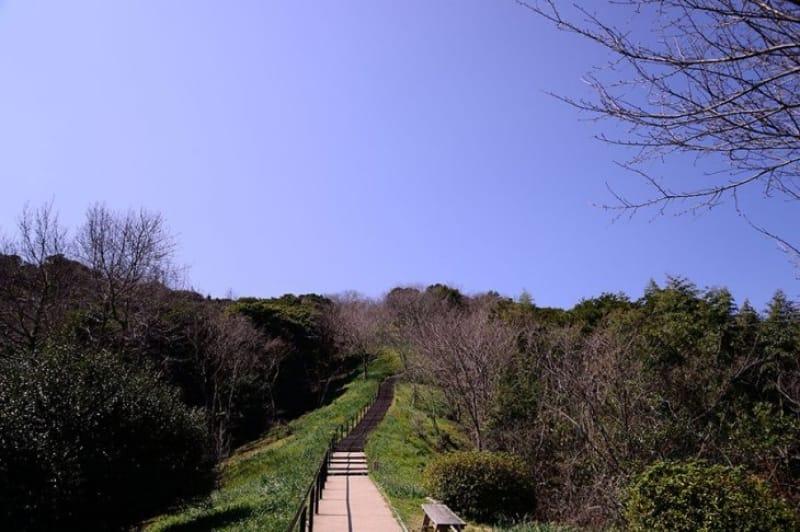 紅葉まつりも開催・白野江植物公園