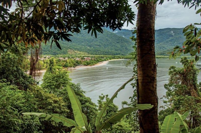 12)これぞブラジル!「大西洋岸森林南東部の保護区群」(自然遺産・1999年登録)