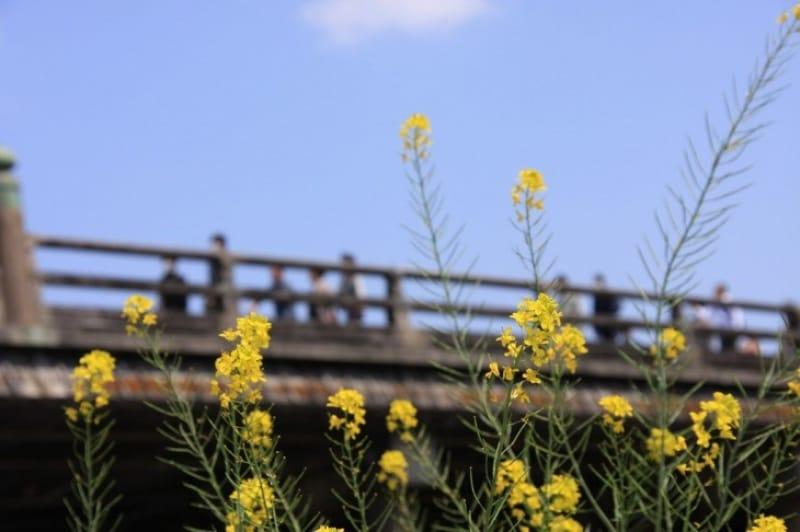 京の入り口、三条大橋