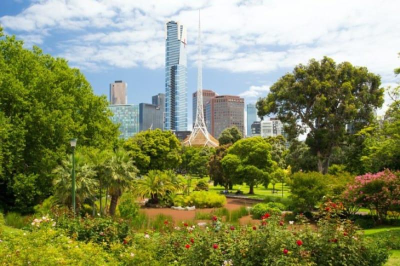 都市部でも自然を感じられるほど緑が豊か
