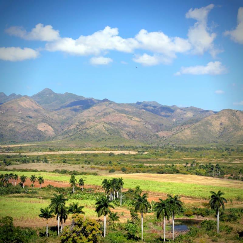 砂糖の名産地であるロス・インヘニオス渓谷