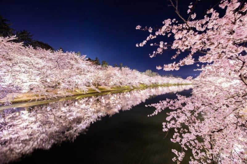 弘前城桜祭り、ライトアップの時間帯は?