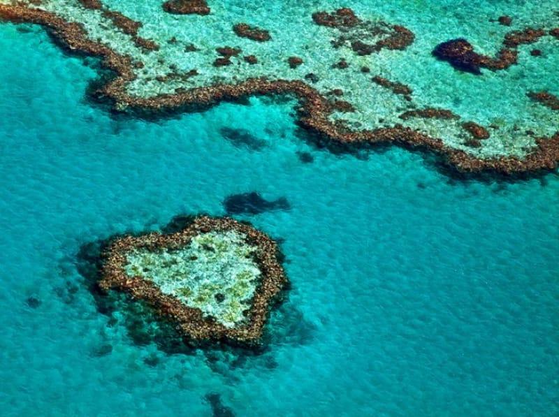 ハートリーフ/オーストラリア