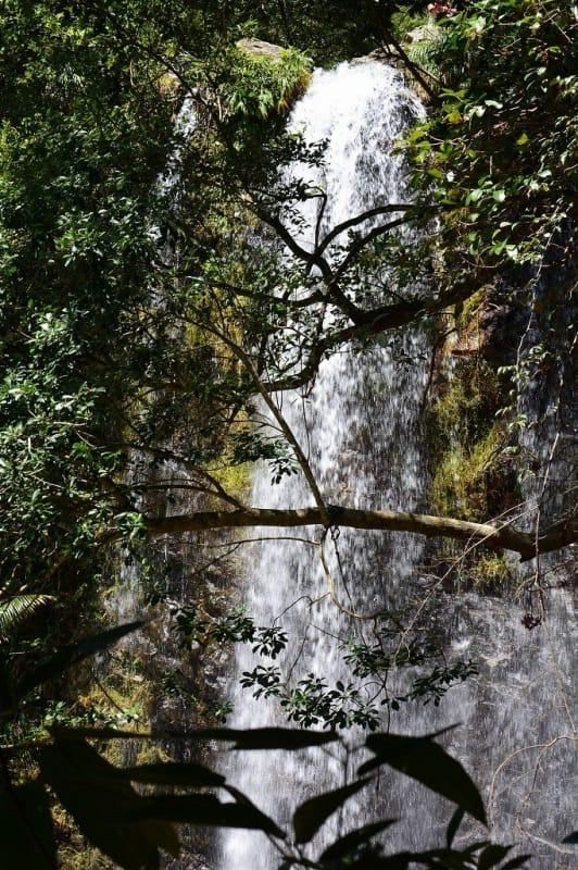 これぞ古代から変わらない沖縄の自然、ター滝