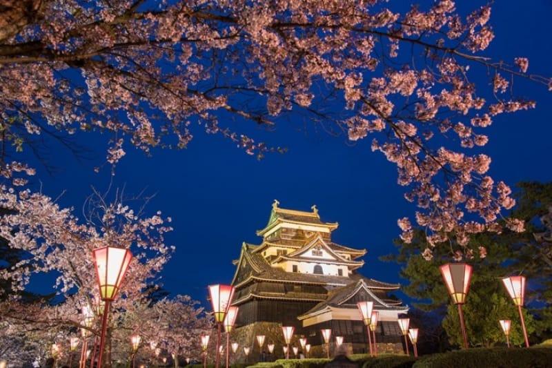 松江城が国宝になるまで