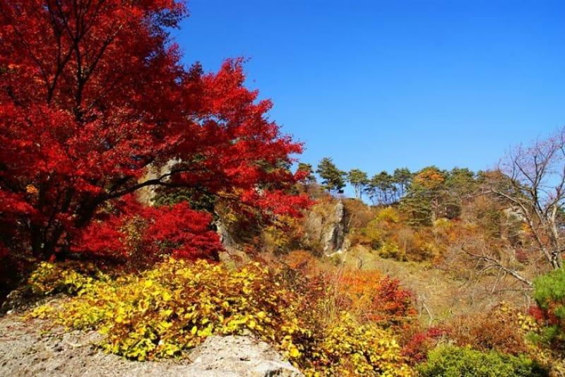 素敵なエピソードを持つ・きみまち阪公園