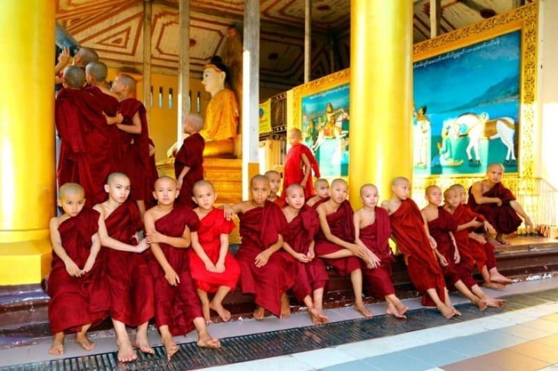 若い修行僧はミャンマーの国宝