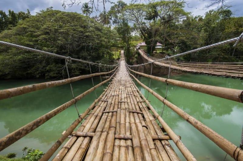 58631:ロボック川のハンギング・ブリッジ(吊橋)で、吊り橋効果でドキドキしたい!