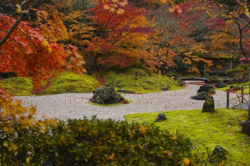「秋」の紅葉の見どころといえば「松島、円通院」