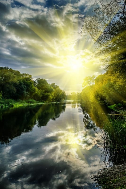 神々しい光に照らし出された川と木々たち