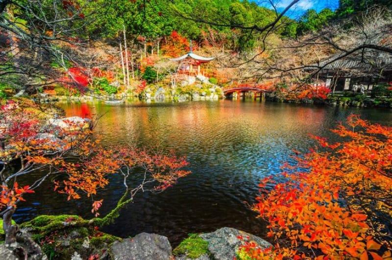 特別名勝にも指定される美しい庭園の風景