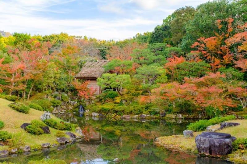 日本の四季を改めて感じさせてくれる