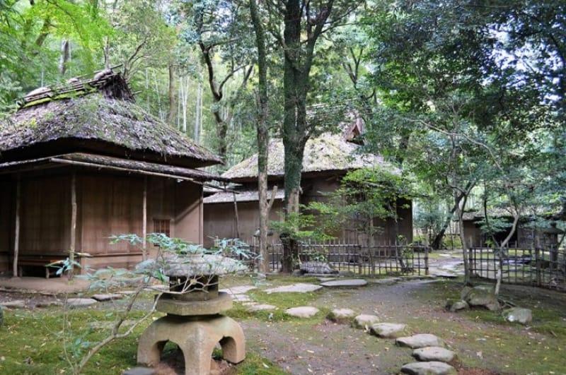 菩提の祈りと紅葉の美しさ・立田自然公園