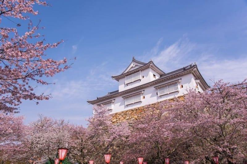 津山のシンボル・津山城