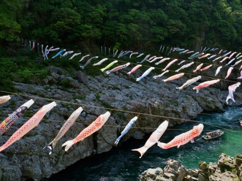 大歩危峡の鯉のぼり