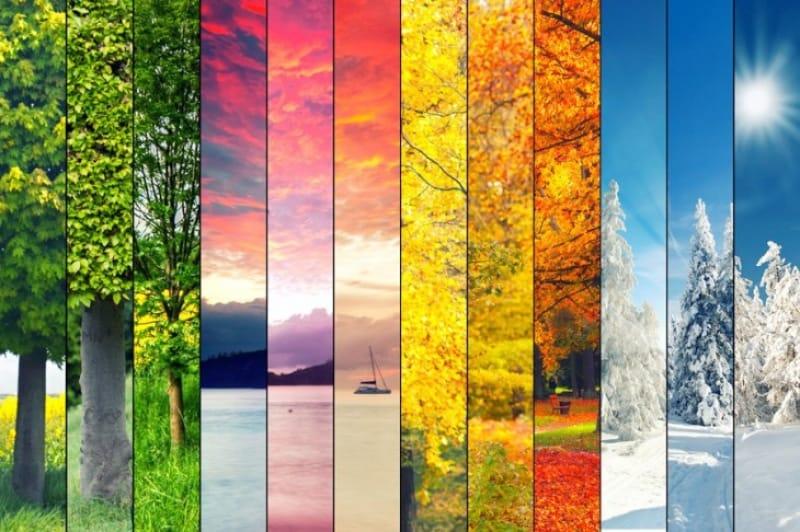どの時期、季節にいきたいですか?