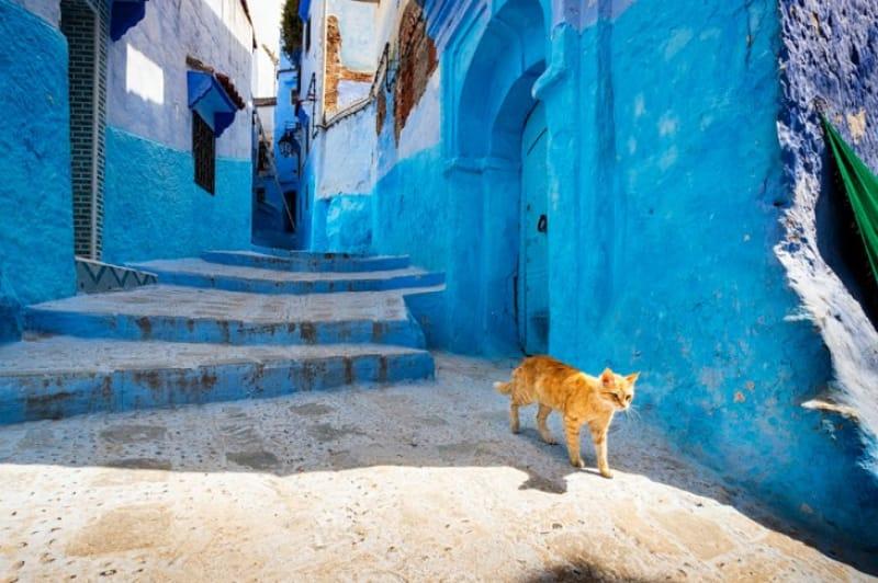 幻想的な青い街シャウエン