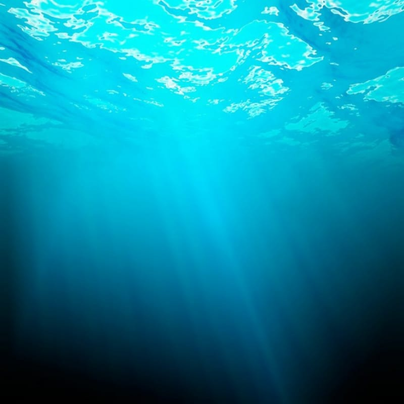美しい水中からの海の眺め