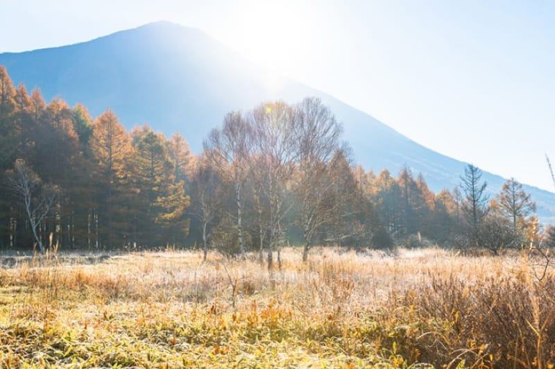 「秋」の紅葉の見どころといえば、「戦場ヶ原」
