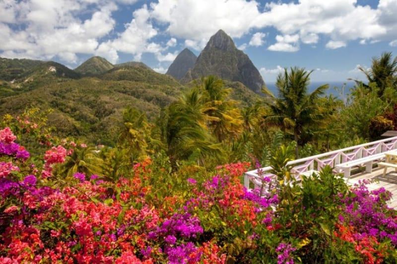 熱帯雨林の豊かな自然 セント・ルシア島