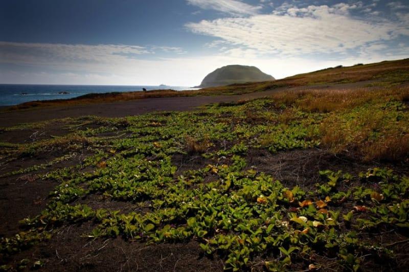 米軍が硫黄島を重視したのはなぜ?