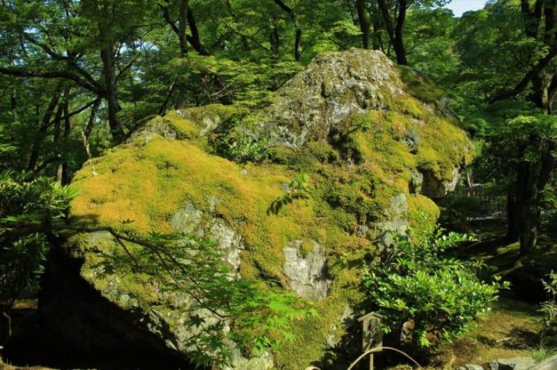 99514:獅子岩