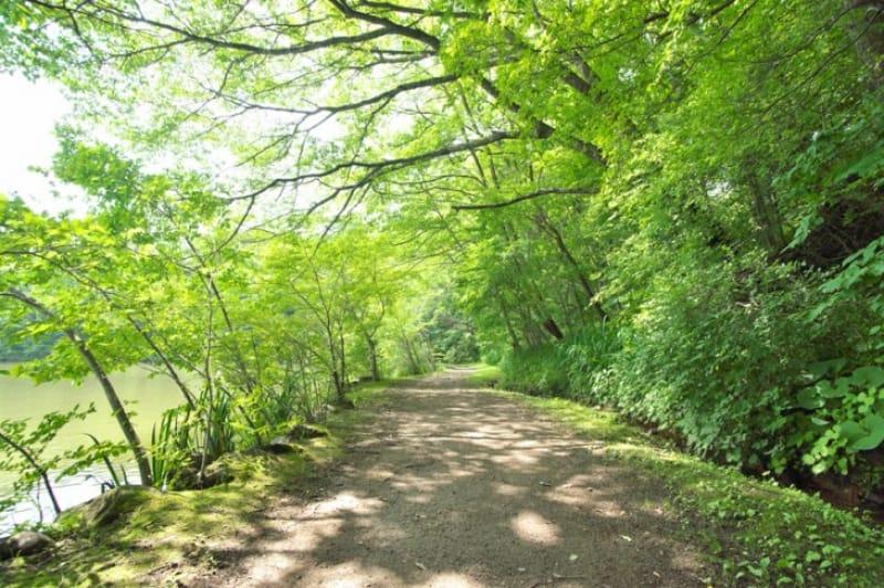 軽井沢へのアクセス