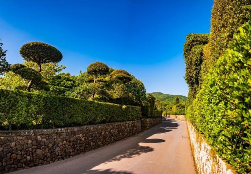 知覧武家屋敷庭園はゆっくり散策する価値があります
