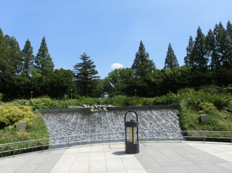 ケヤキ並木に広がる紅葉・靭公園