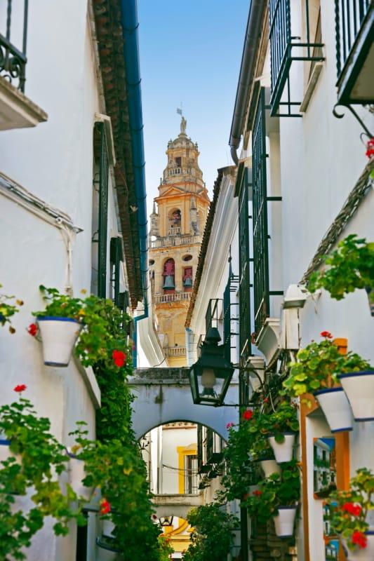 花が咲き乱れるコルドバ旧市街