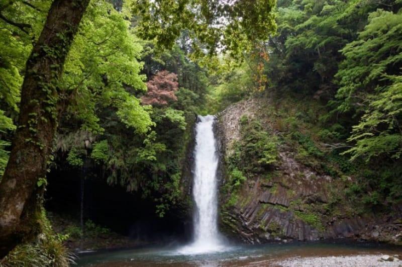 「浄蓮の滝」を間近でみよう